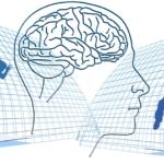 Exercise For Brain